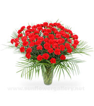 red-carnation-sympathy-bouquet
